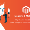 Why Magento 2 Mobile App is a Game changer for your E-commerce Business?