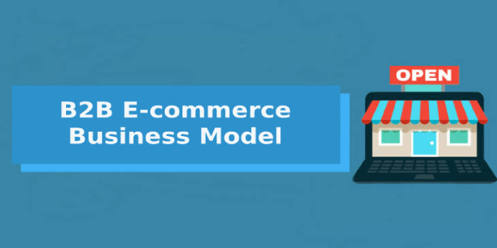 B2B E-commerce Business Model