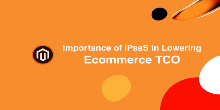 Importance of iPaaS in Lowering Ecommerce TCO