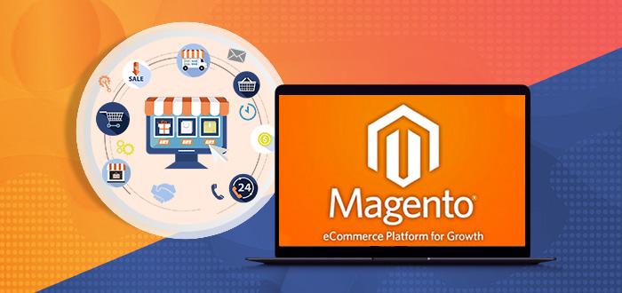 Magento Custom Development for a Successful eCommerce Store